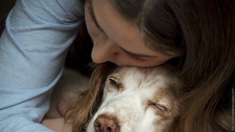 Einsamkeit - Trauerzeit nach einer Trennung. Einsame Frau sieht traurig aus und kuschelt mit ihrem Hund