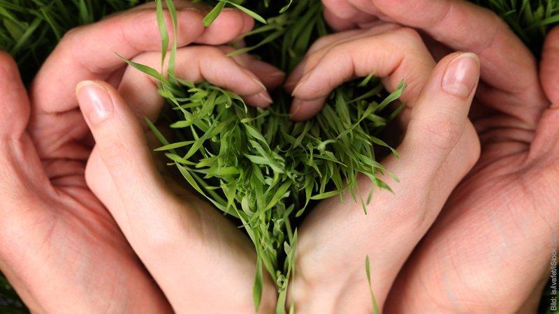 Fest der Fruchtbarkeit - Ostern. Hände bilden ein Herz.