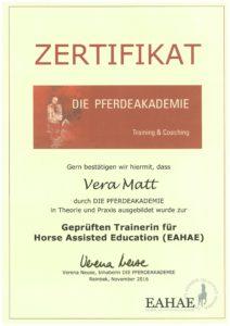 Ausbildung pferdegestütztes Coaching und Training